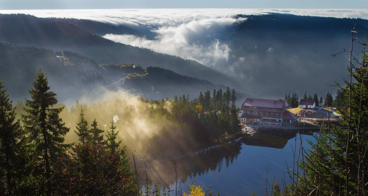 Naturpark Schwarzwald Mitte/Nord lädt ein zum Fotowettbewerb