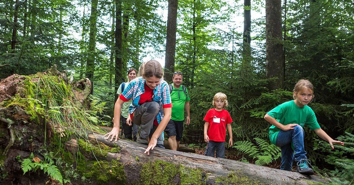 Erlebnispfade im Nationalpark wieder geöffnet