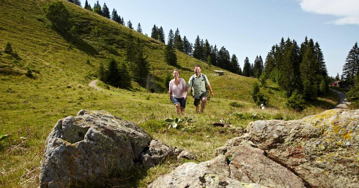 Wandertipp: der Feldbergsteig – das Höchste im Schwarzwald