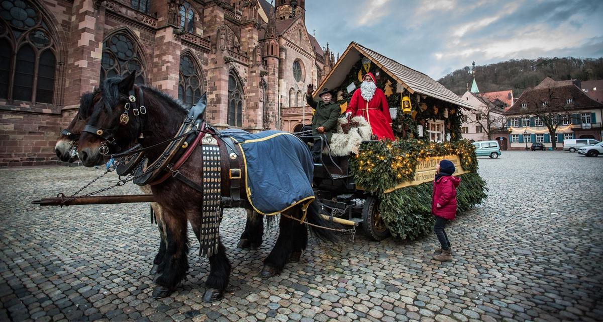 Ganter-Nikolaus: In und um Freiburg herum lieben sie ihn